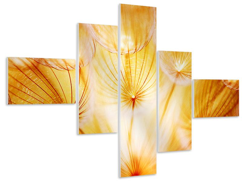 Hartschaumbild 5-teilig modern Close Up Pusteblume im Licht
