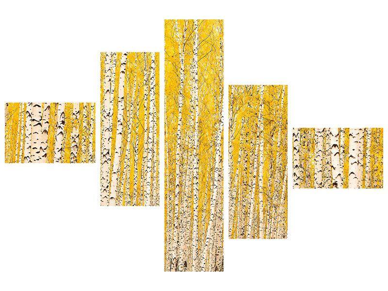 Hartschaumbild 5-teilig modern Der Birkenwald im Herbst