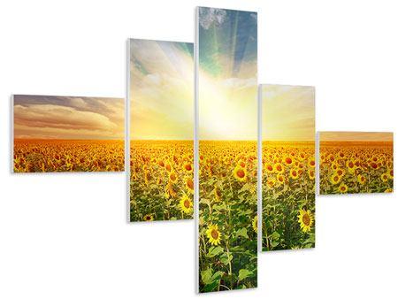 Hartschaumbild 5-teilig modern Ein Feld voller Sonnenblumen