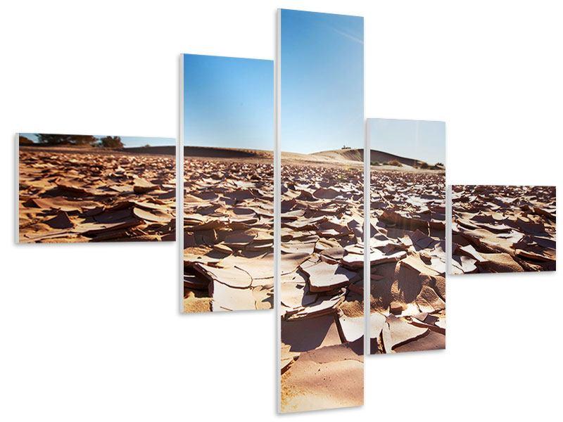 Hartschaumbild 5-teilig modern Dürre