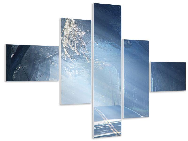 Hartschaumbild 5-teilig modern Lichtdurchflutete Baumallee