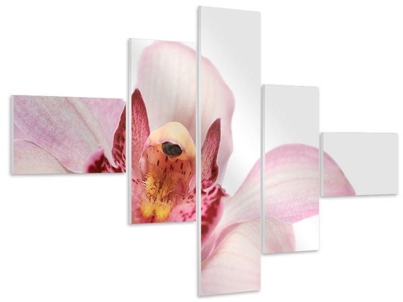 Hartschaumbild 5-teilig modern Orchideenblüte XXL