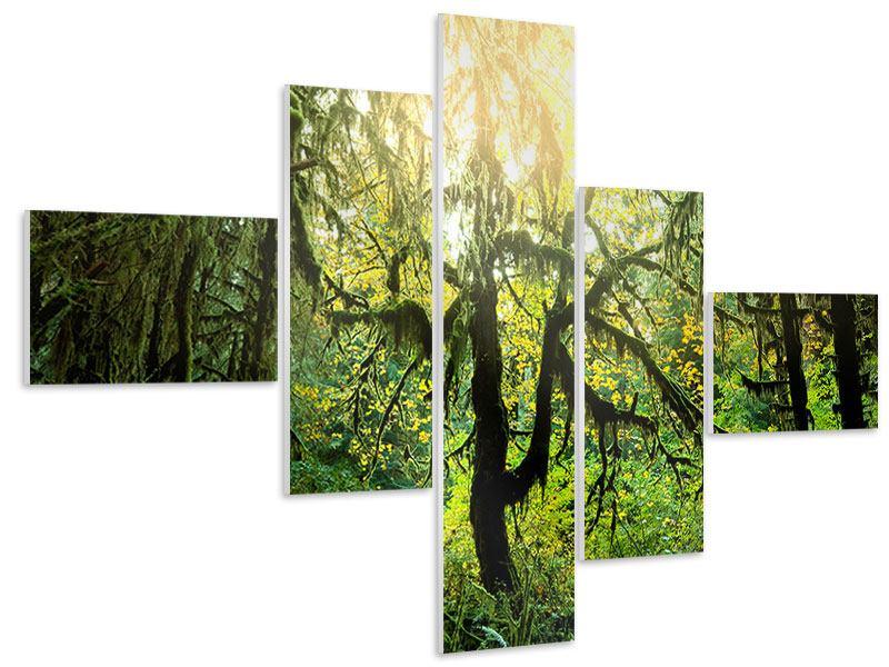 Hartschaumbild 5-teilig modern Verträumter Wald