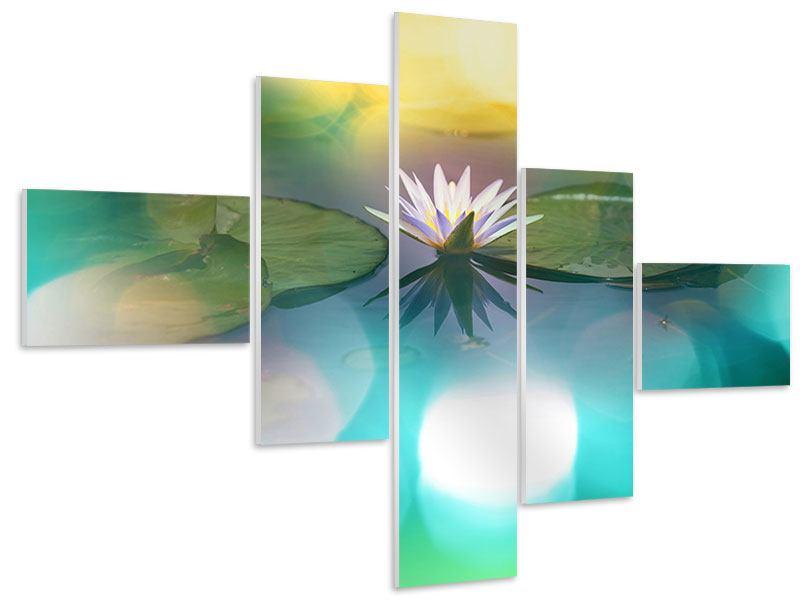 Hartschaumbild 5-teilig modern Lotus-Spiegelung