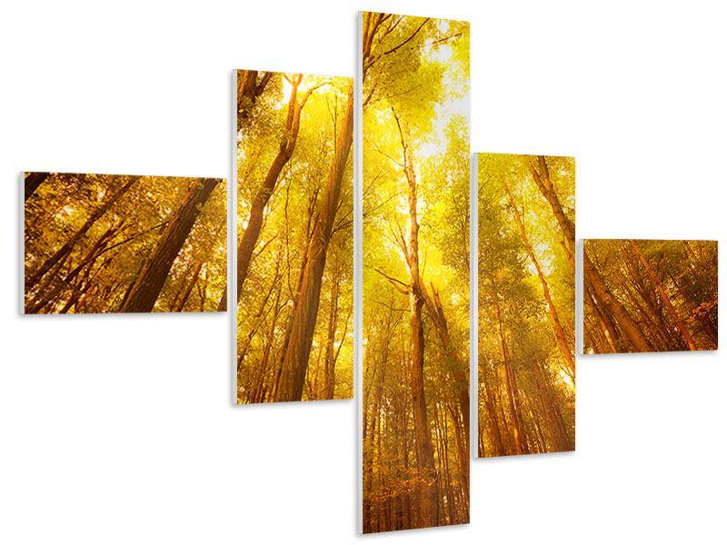 Hartschaumbild 5-teilig modern Herbstwald