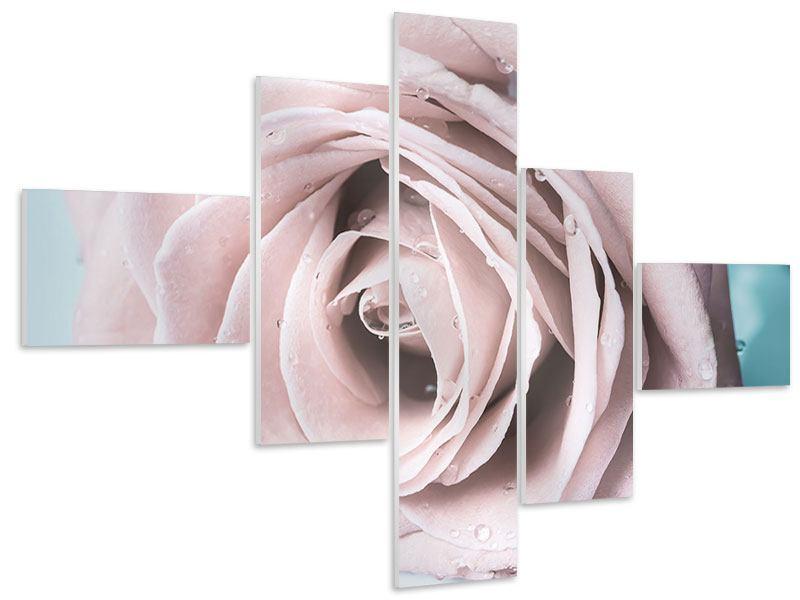 Hartschaumbild 5-teilig modern Pastellrose