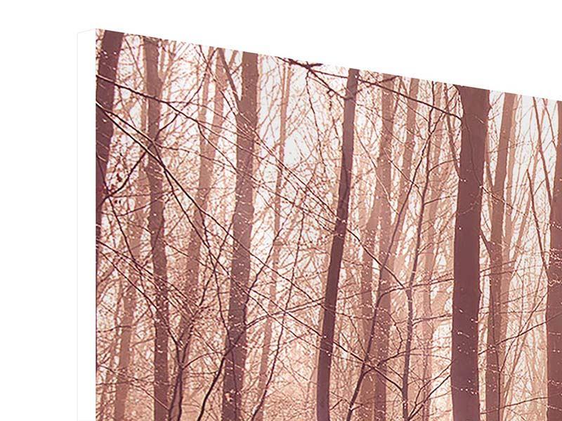 Hartschaumbild 5-teilig modern Sonnenuntergang im Herbstwald