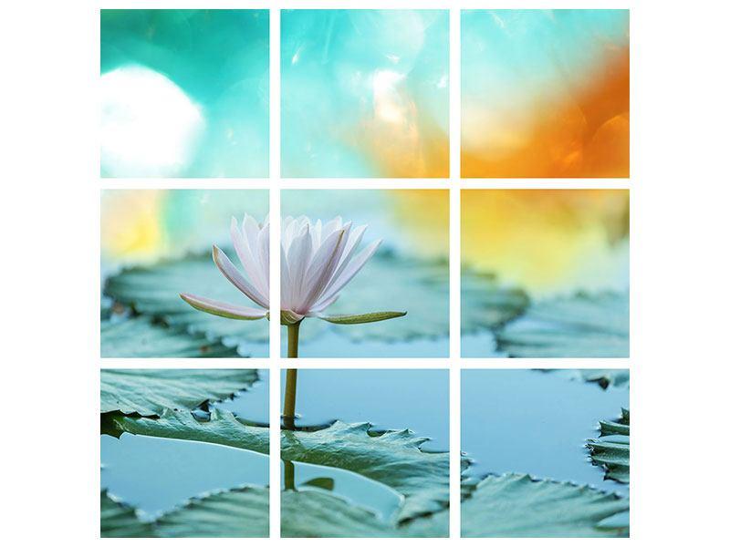 Hartschaumbild 9-teilig Verträumte Lotus