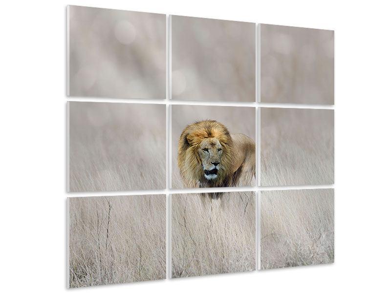 Hartschaumbild 9-teilig Der Löwe