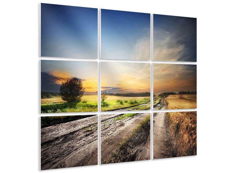 Hartschaumbild 9-teilig Sonnenaufgang am Feld