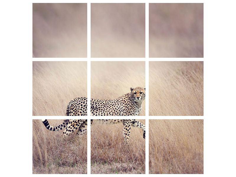 Hartschaumbild 9-teilig Gepard