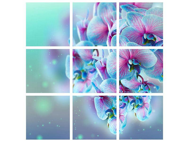 Hartschaumbild 9-teilig Farbige Orchideen