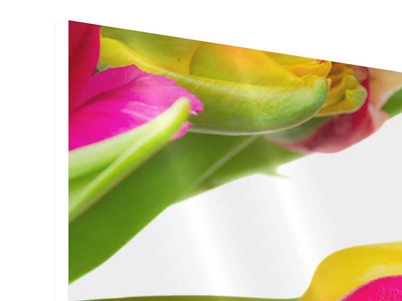 Hartschaumbild 9-teilig Ein bunter Tulpenstrauss