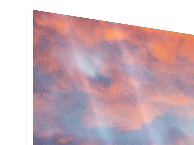 Hartschaumbild 9-teilig Skyline Das Lichtermeer von Sydney