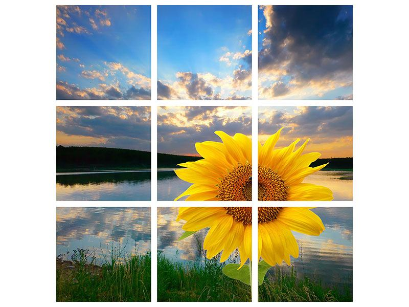 Hartschaumbild 9-teilig Sonnenblume am See