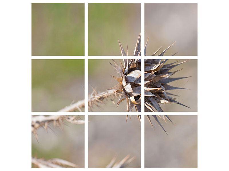 Hartschaumbild 9-teilig Die Wüstenblume