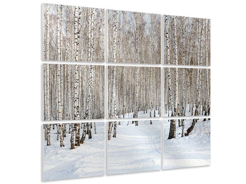 Hartschaumbild 9-teilig Birkenwald-Spuren im Schnee