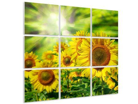 Hartschaumbild 9-teilig Die Sonne und die Blumen