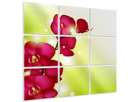 Hartschaumbild 9-teilig Heiligtum der Orchidee