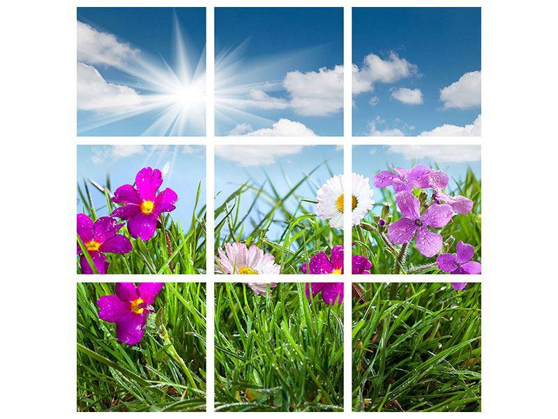 Hartschaumbild 9-teilig Blumenwiese