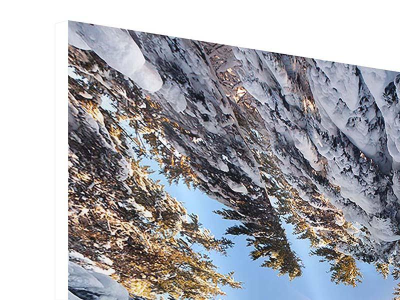 Hartschaumbild 9-teilig Verschneite Tannenspitzen in der Sonne