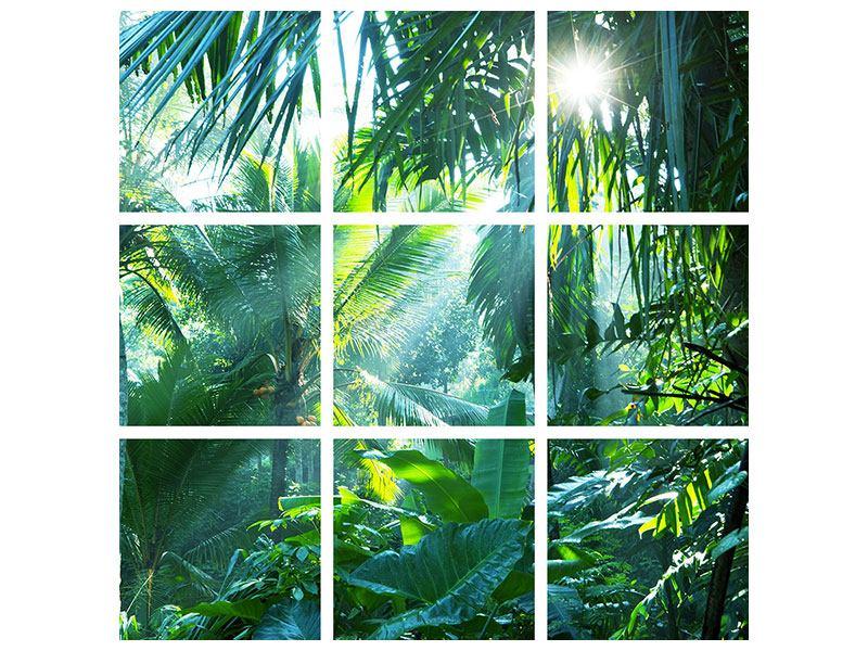 Hartschaumbild 9-teilig Im Tropenwald