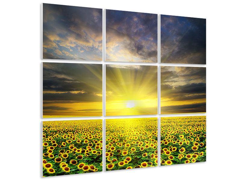 Hartschaumbild 9-teilig Abenddämmerung bei den Sonnenblumen