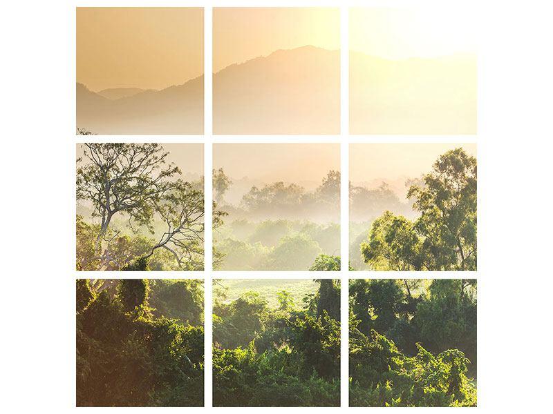 Hartschaumbild 9-teilig Lichtspiel im Wald