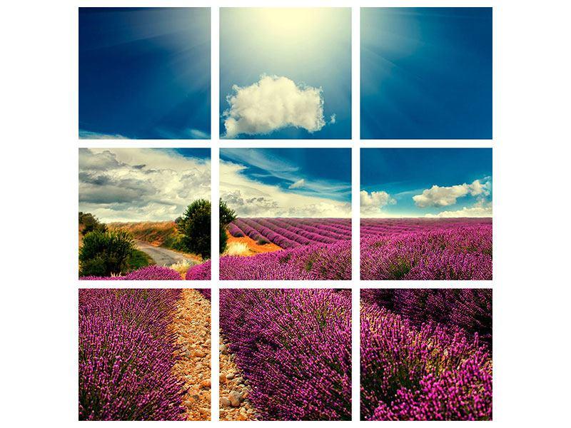 Hartschaumbild 9-teilig Das Lavendeltal