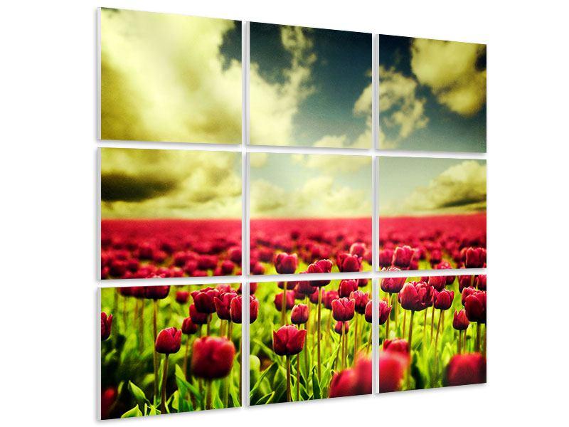 Hartschaumbild 9-teilig Ein Tulpenfeld