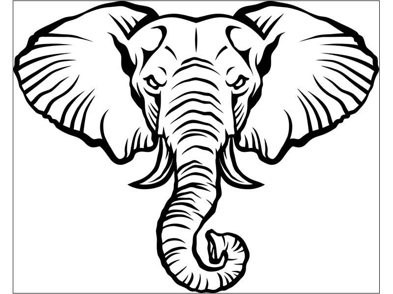 ausmalbild elefantenkopf  cartoonbild