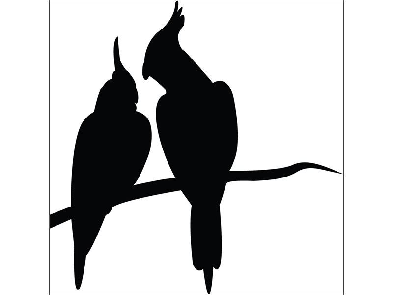 Wall Sticker parrot couple