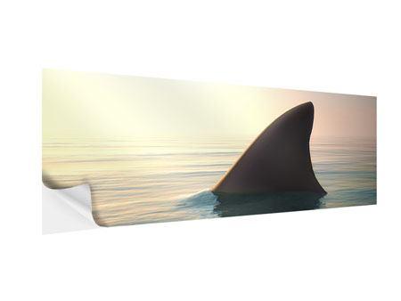 Klebeposter Panorama Haifischflosse