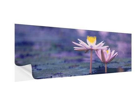 Klebeposter Panorama Lotus Duo im Sonnenaufgang