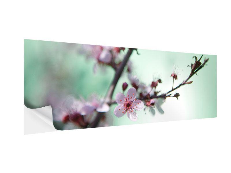 Klebeposter Panorama Die japanische Kirschblüte