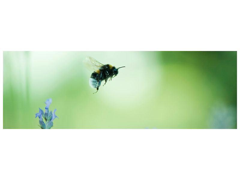 Klebeposter Panorama Die Biene