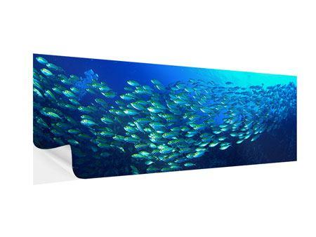 Klebeposter Panorama Fischschwarm