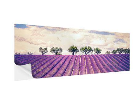 Klebeposter Panorama Das Lavendelfeld