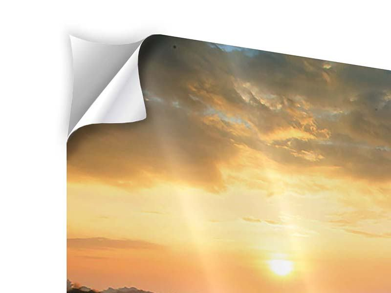 Klebeposter Panorama Sonnenblumenfeld im Abendrot