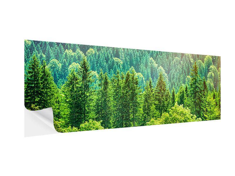 Klebeposter Panorama Der Waldhügel