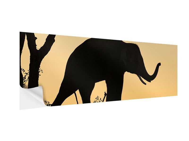 Klebeposter Panorama Elefant an der Wand