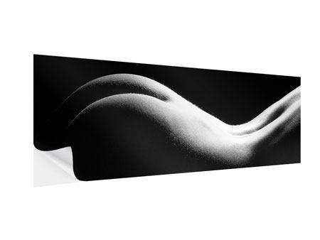 Klebeposter Panorama Nude