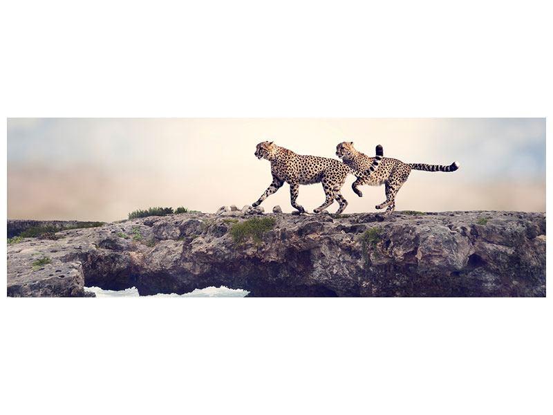 Klebeposter Panorama Zwei Geparden