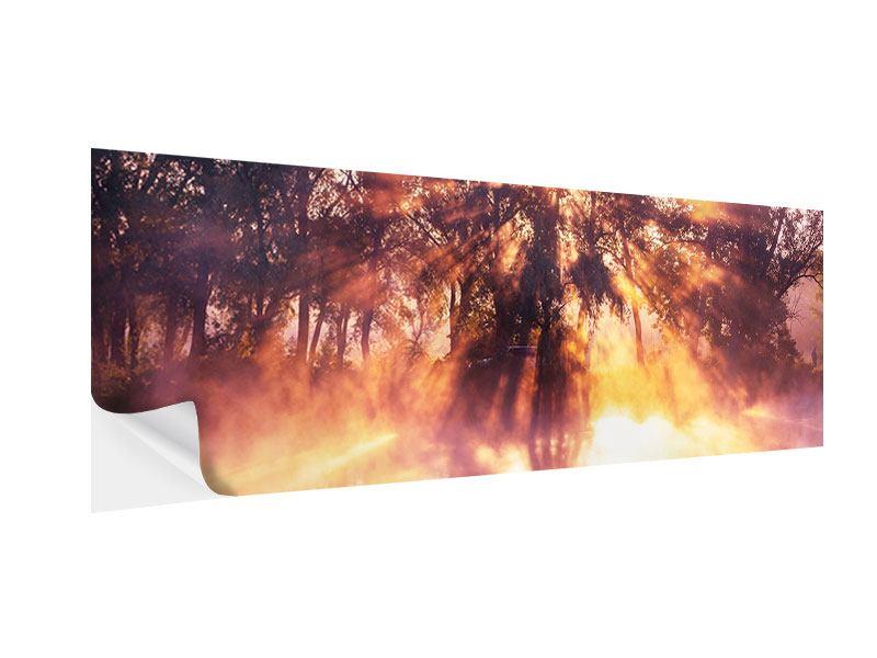 Klebeposter Panorama Die Waldspiegelung