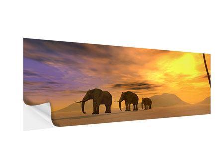 Klebeposter Panorama Wüstenelefanten