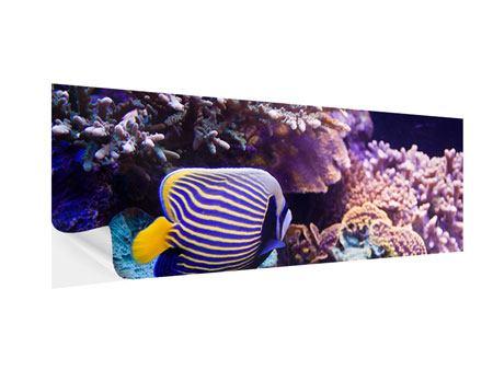 Klebeposter Panorama Faszination Unterwasser