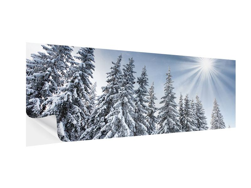 Klebeposter Panorama Wintertannen