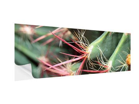 Klebeposter Panorama Die Kaktusblüte
