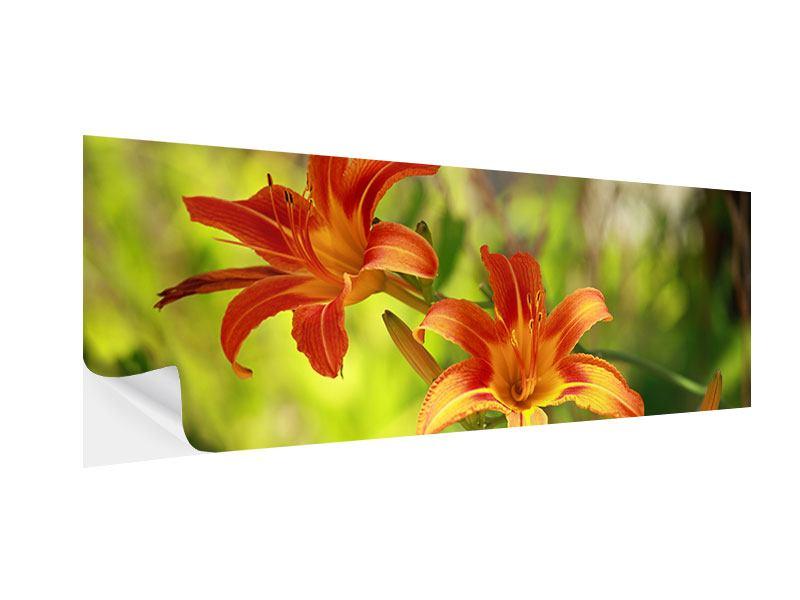 Klebeposter Panorama Lilien in der Natur