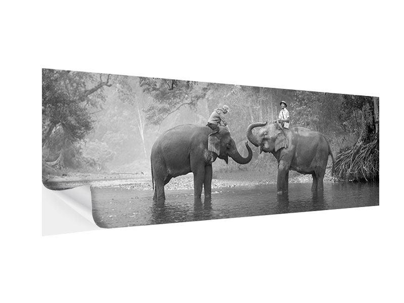 Klebeposter Panorama Zwei Elefanten